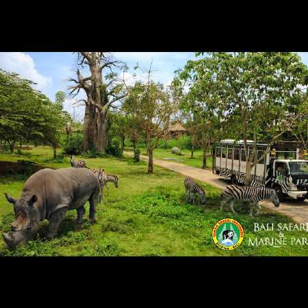 Bali Safari Park - Hire Bali car driver for Private Tour